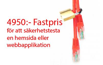 4950:- Fastpris för ett säkerhetstest
